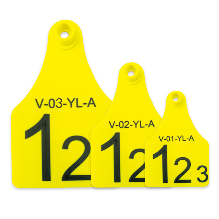 Mini / Middle / Large Size RFID Visual Tag Laser Printing Support Yellow Or Other